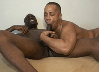 BlackBreeders – The Boots Must Be Knockin!