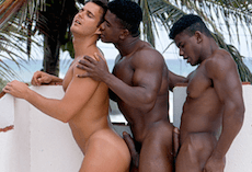 Vintage – Black Twins Fuck A White Bottom